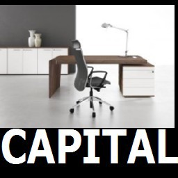 Cad 3D Free Model cf  capital
