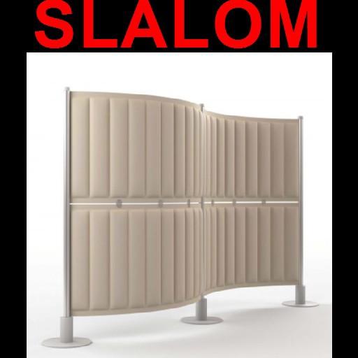 Cad 3D Free Model cf  slalom